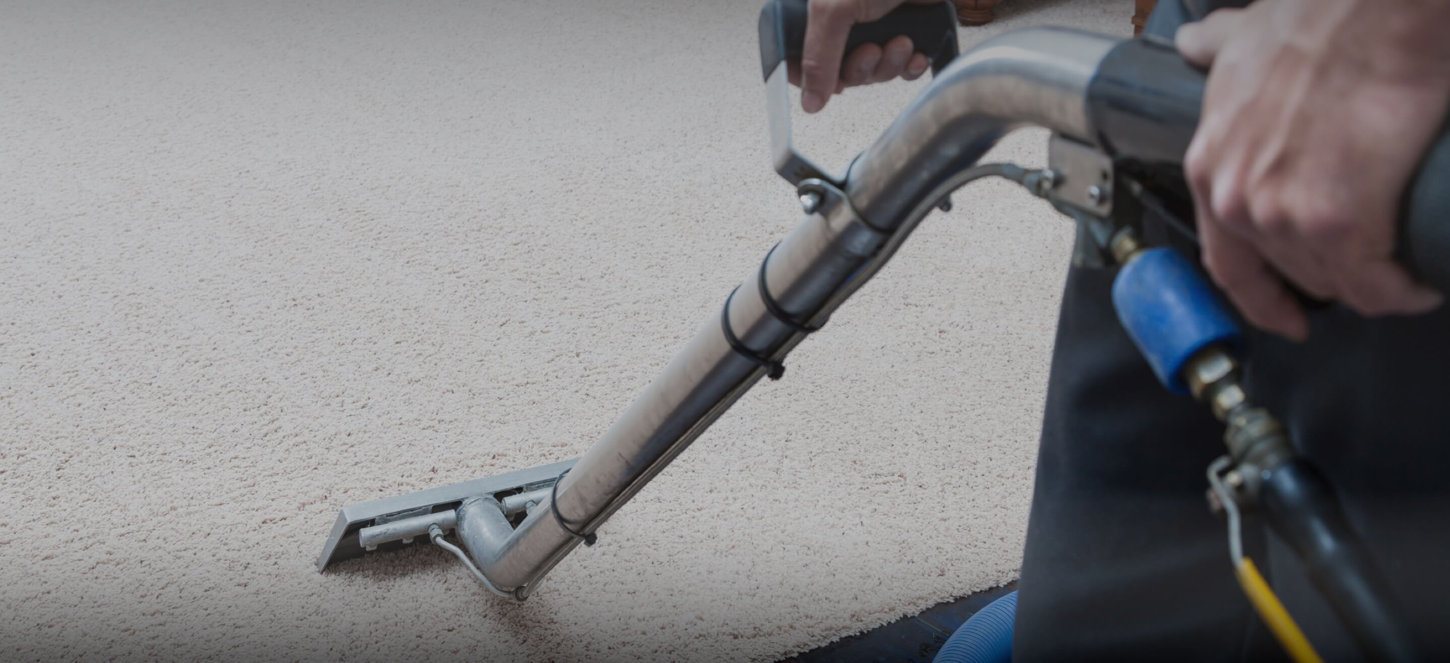 Carpet Cleaning Services in Medina